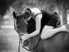wa-horse-photography