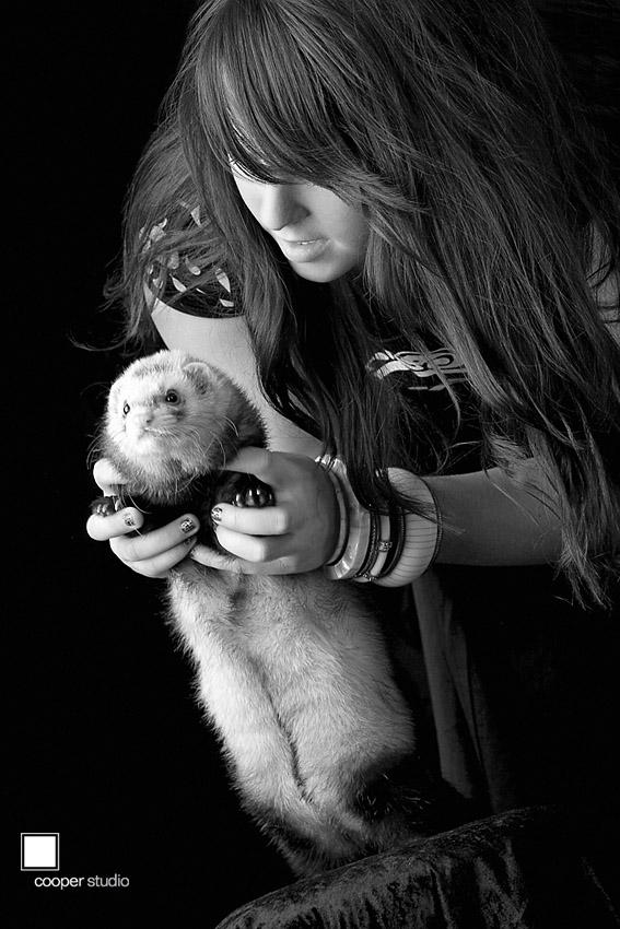 ferret, perth photography